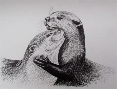sea otter tattoo 2 otters limited edition print black white drawing
