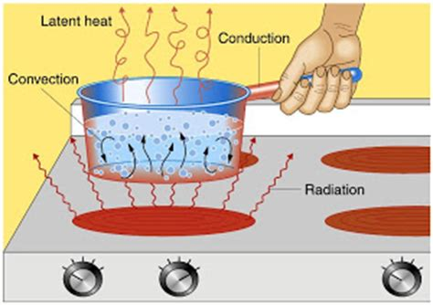 potted biography definition the importance of the heat thermal energy science online