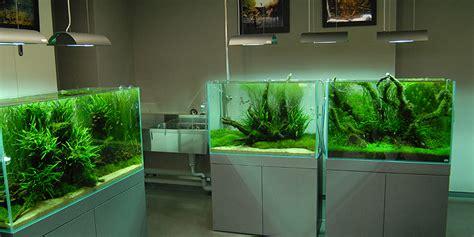 jasa pembuatan meja aquarium aquascape bandung kindow