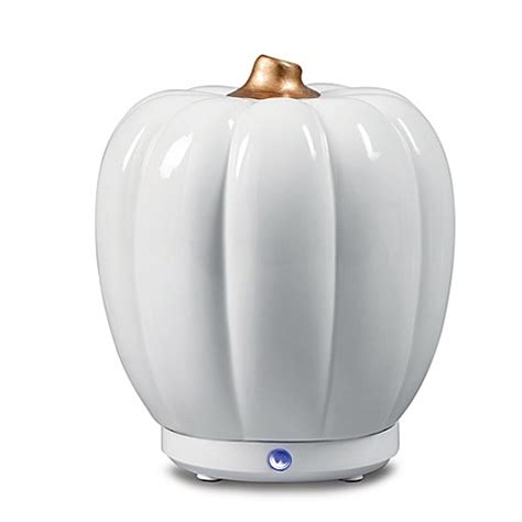 bed bath and beyond diffuser sparoom 174 pumpkin usb ultrasonic essential oil diffuser in