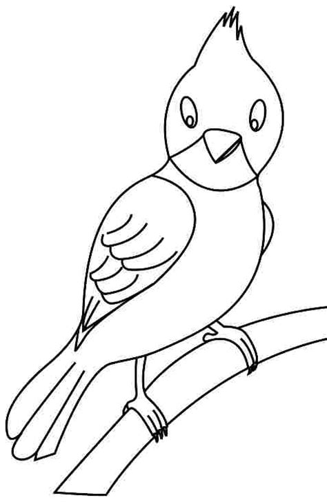 preschool coloring pages of birds 6 best images of printable bird coloring pages preschool