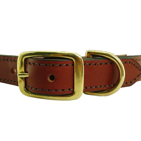 collars with name leather collars with name plate www pixshark images galleries with a bite