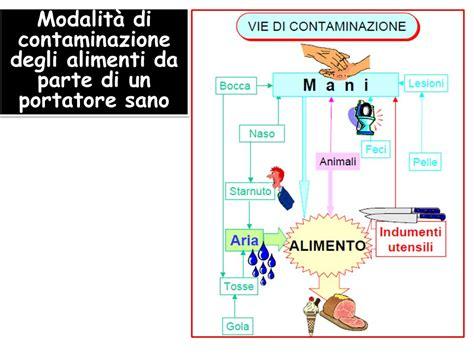 contaminazione alimentare alimenti contaminazioni alimentari chimiche fisiche e