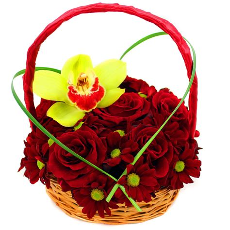 Cheap Florist by Flowers Delivered Next Day Cheap Thin