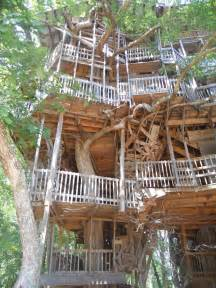 treehouse masters dollywood or bust quot tree houses
