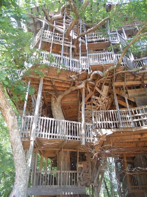 tree house master tree house master 28 images mohican treehouse on animal planet s treehouse masters