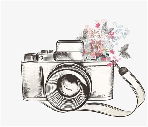 camera sketch wallpaper c 226 mera de flores animal excelente padr 227 o png e vector