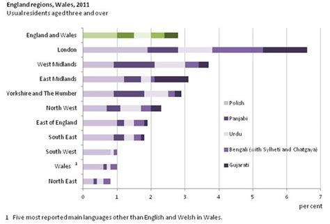 language uk 2011 census top 20 languages spoken in the uk mirror