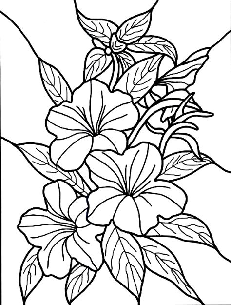 flowers coloring free printable hibiscus coloring pages for