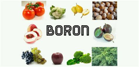 Boron Detox by 6 Ways To Detox Fluoride From The