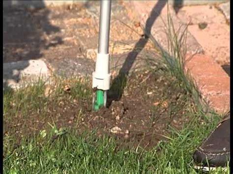 come eliminare i topi dal giardino come eliminare le erbacce dal vostro giardino doovi