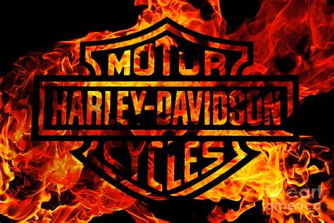 Silhouette Home Decor by Harley Davidson Logo Flames Digital Art By Randy Steele