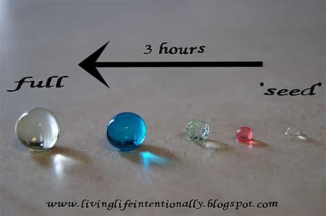 water bead sensory science