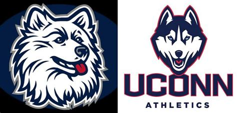 Ct Detox Husky D by Uconn Huskies Traditional Connecticut Mascot Logo Vs New