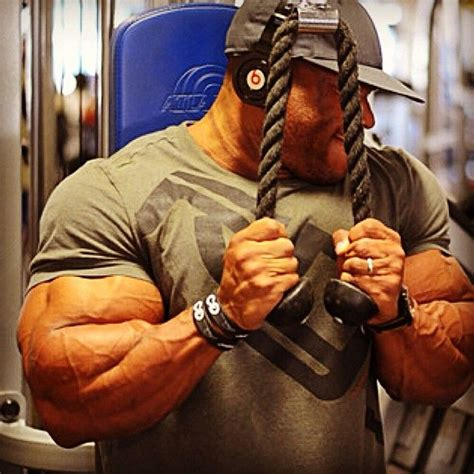 phil heath bench press 17 best images about human body man on pinterest arnold