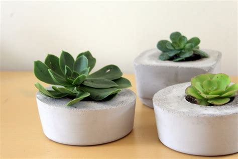 diy concrete succulent planter request a custom order and have something made just for you