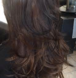 low lights on black shoulder length hair brown with dark brown black lowlights gorgeous hair by
