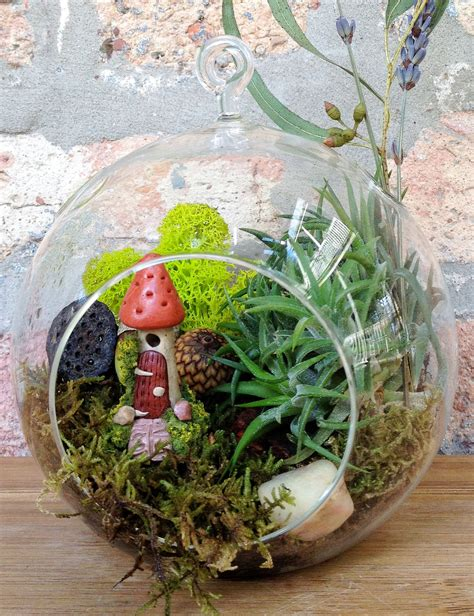 fairy terrarium house and air plant moss terrarium a unique birthday
