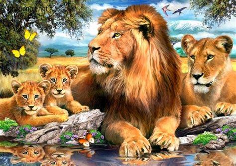 imagenes de leones fantasia compartiendo fondos animales tigres y leones