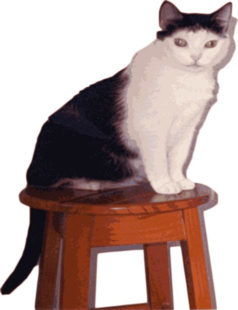 Cat Has Stool by Cat On Stool Clip At Clker Vector Clip