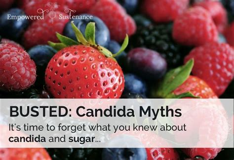 Sugar Detox Hives by Busted Candida Myths And How To Properly Address Candida