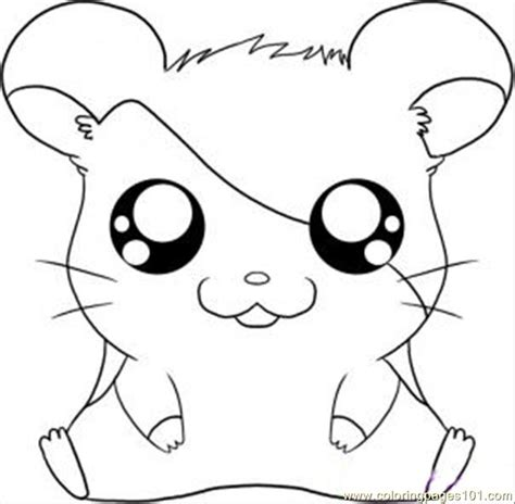 Hamtaro Coloring Pages Online | hamtaro step 5 coloring page free hamtaro coloring pages
