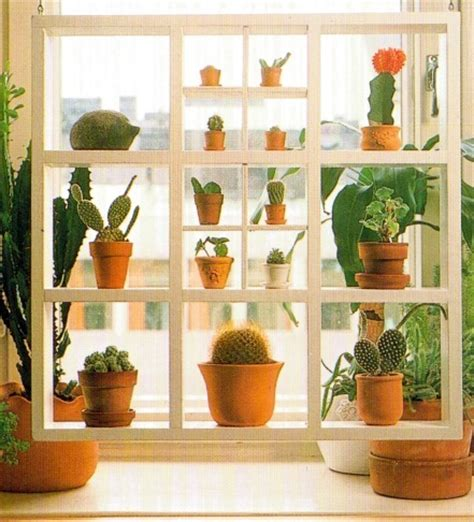 plant shelves window and window plants on pinterest