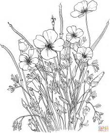 California Poppy Coloring Page golden poppy or california poppy coloring page free