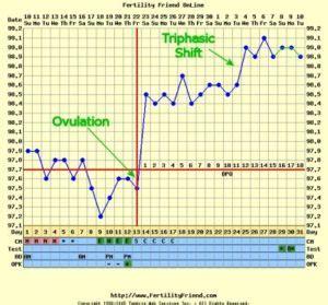 sensazione di bagnato prima delle mestruazioni la temperatura basale parole e sapere