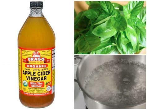apple vinegar toner diy apple cider vinegar toner with basil water