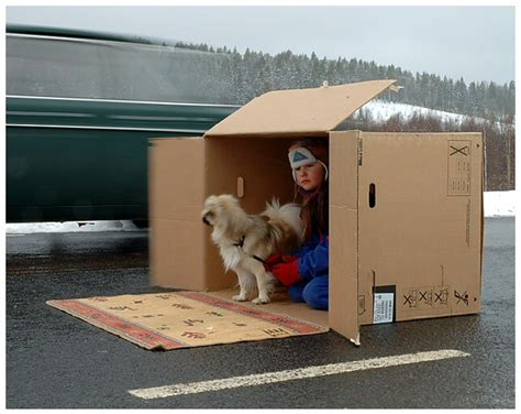 Living In A Box Living In A Box by Living In A Cardboard Box In The Middle Of The Road By