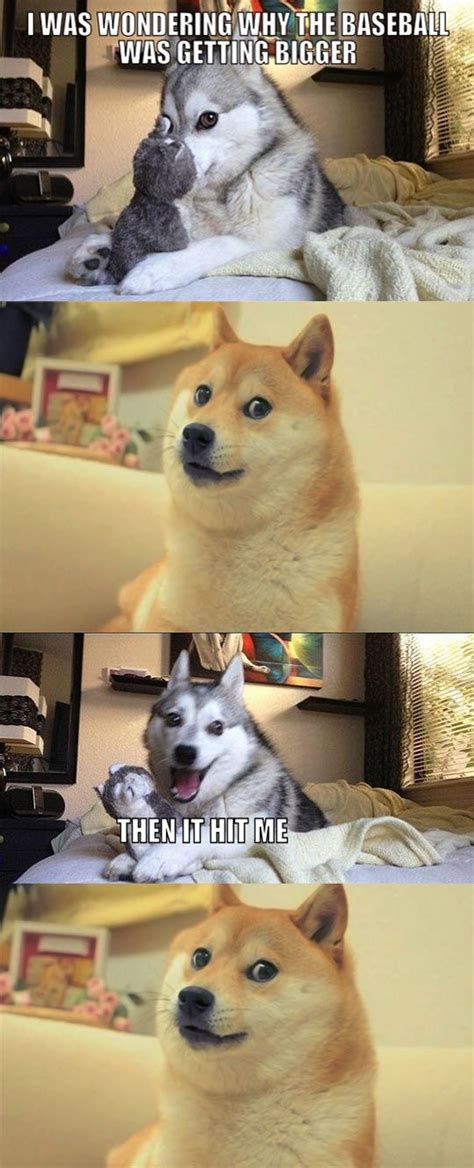 wow  joke funny funny puns dog jokes puns jokes