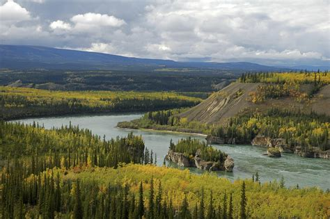 Teh Yakon why the yukon river is so valuable wwf