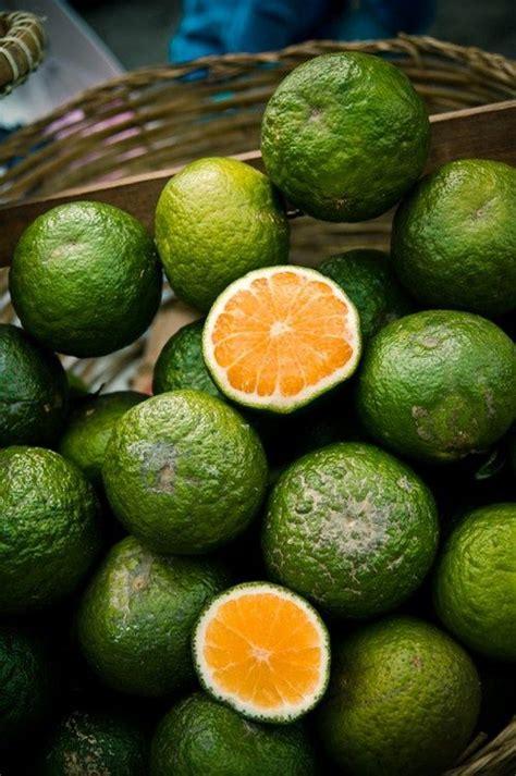 b fruit x southeast asian oranges via eats frutas