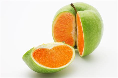 Comparing Apples To Oranges by Understand The Difference Between Profit And Cashflow