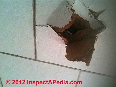 image gallery identifying asbestos ceiling tiles