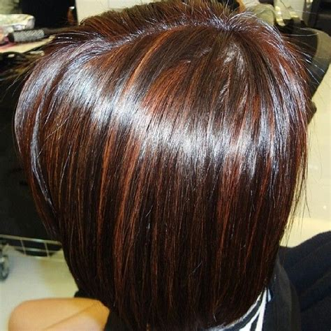 dark brown hair with mahogany highlights dark brown hair with mahogany highlights brown hairs