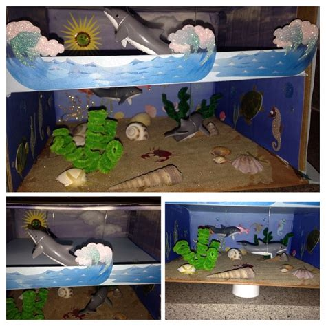 diy projects for home decor pinterest 3d dolphin habitat project my diy projects pinterest