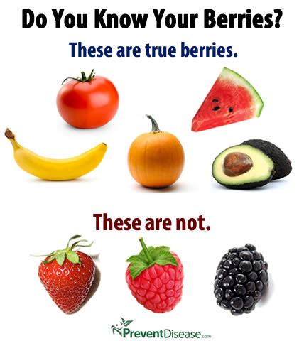 fruit definition your berries
