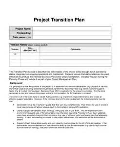 brand management plan template project plan template 10 free word pdf document