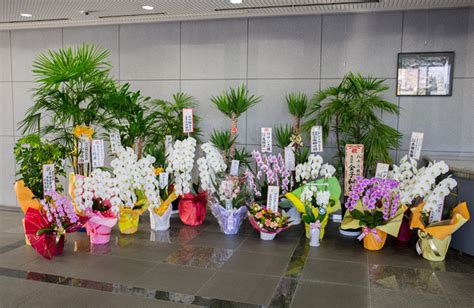 office gifts alluring 70 office warming gifts design inspiration of