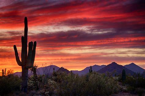 paint nite yuma az sonoran sunset photograph by saija lehtonen