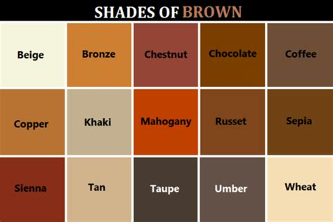 shades of brown name of shades of brown dark brown hairs