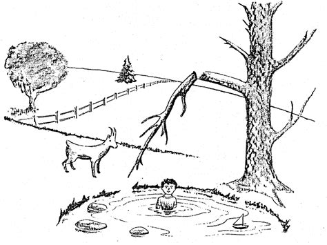 Observations Vs Inferences Worksheet by The Goat By The Water Observation Vs Inference
