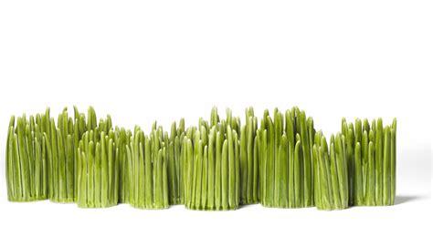 Grass Vase by Grass Vase Small Green By Normann Copenhagen