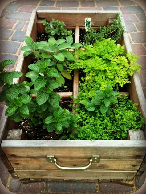 herb boxes herb box old farmhouse pinterest