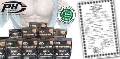 Obat Whey Protein jual suplemen prohybrid whey suplemen fitness murah