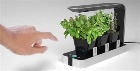 hydroponic indoor herb garden hydroponic herb garden things i want in my home pinterest
