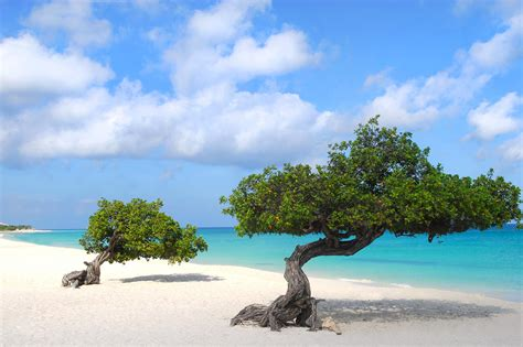 aruba vacation packages  airfare liberty travel