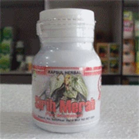 Kapsul Hulbah Fenugreek Herbal Pembesar Payudara Asihulba Fenugrek tanaman obat tradisional toko menjual obat herbal dan obat tradisional indonesia di